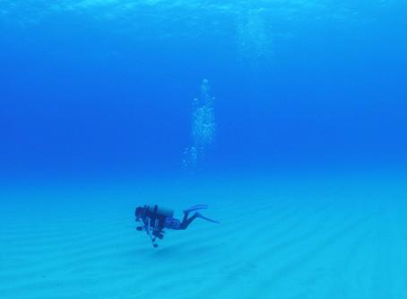 ダイビングで初海外ロタへ!!