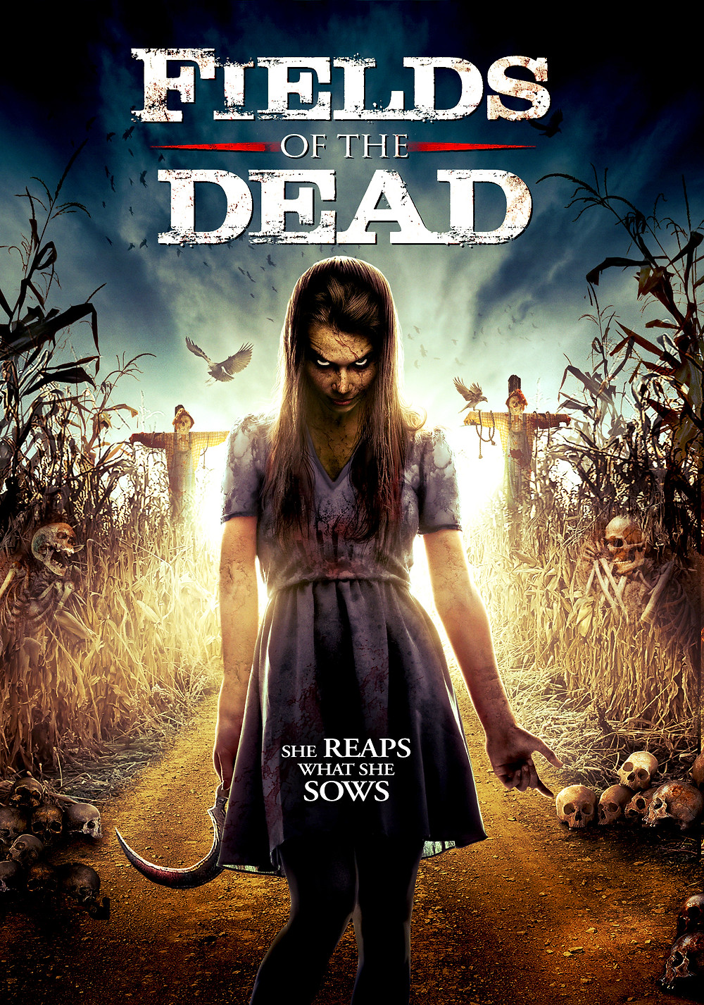 FIELDS_OF_THE_DEAD_DVD_SLV.jpg