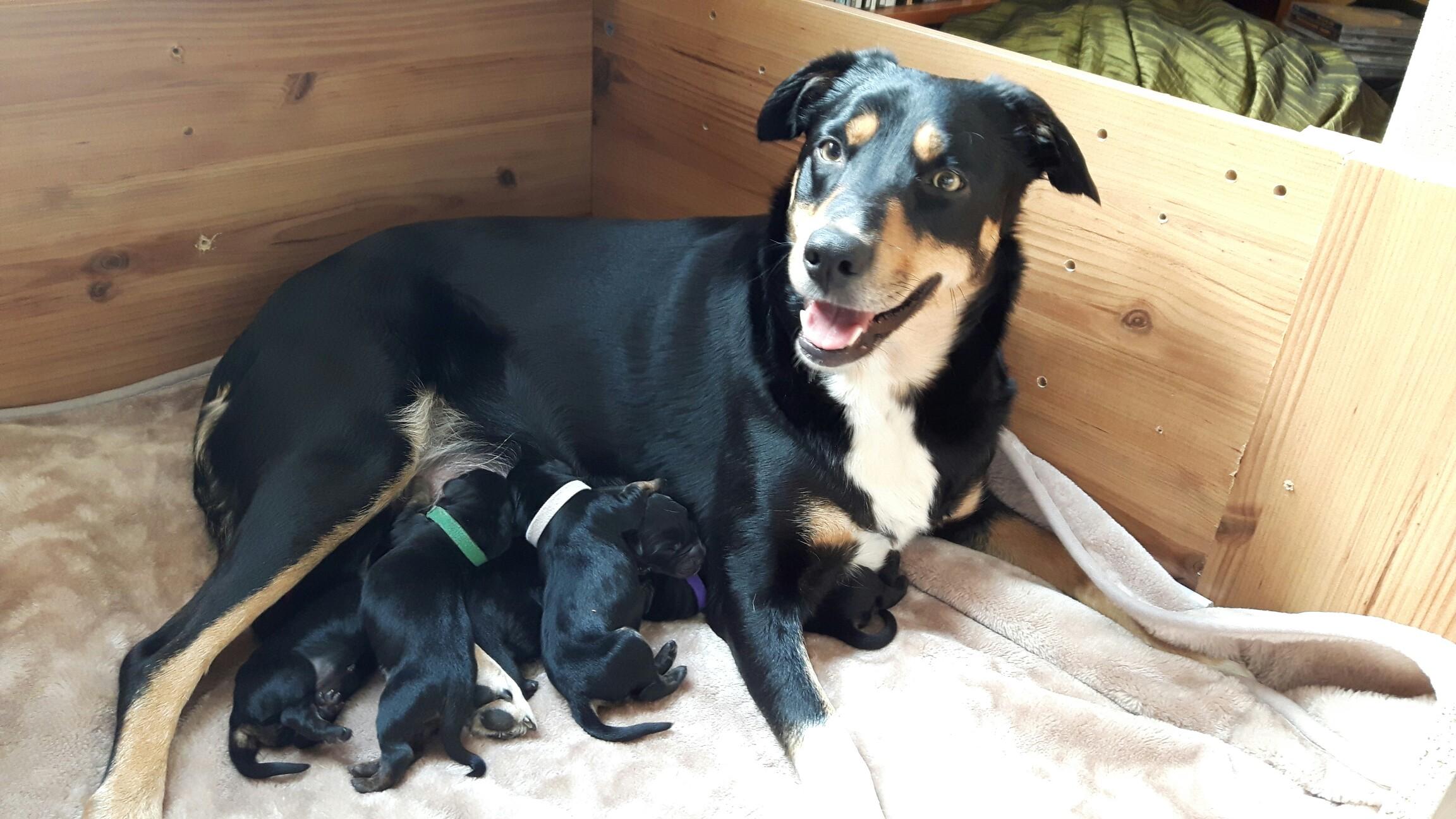 Proud Mummy!