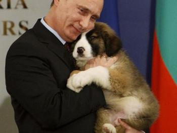Путин предложил освободить от налогов работающих на себя граждан