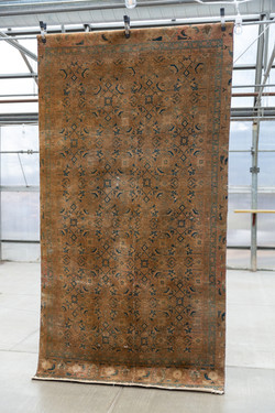 Benti Rug (5x10) - $65