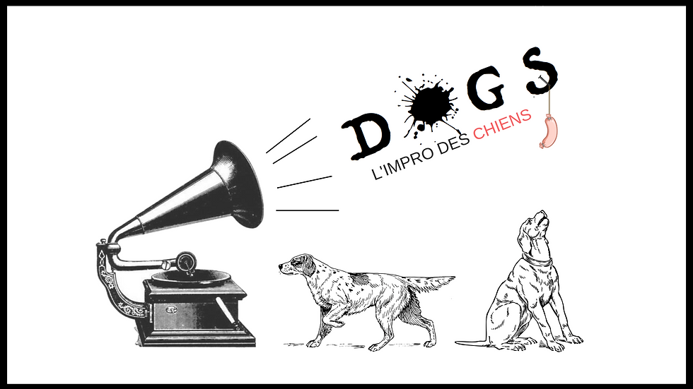 DOGS(1).png