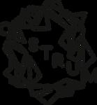 logo_noir_light_diagonale_castrum.png