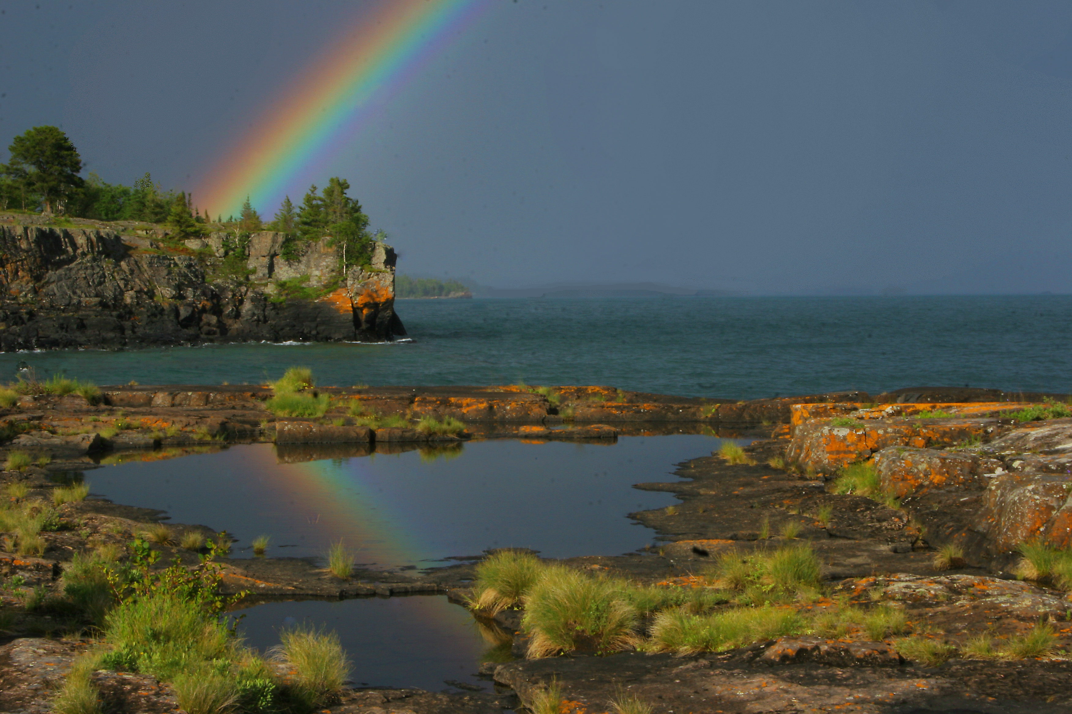 Tee Harbor Rainbow