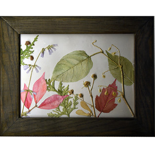 Maple Leaves. Pods and Cedar $115.00