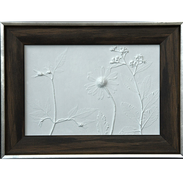 White fossilized daisies SOLD