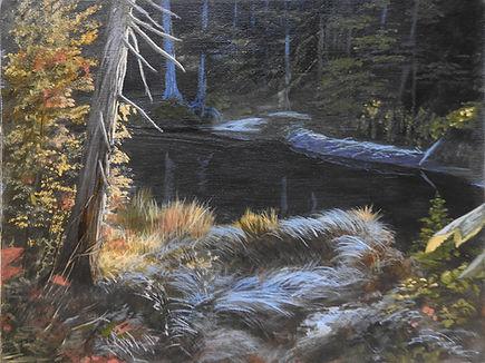 DSCN1264 First Frost Beaver Pond wbsz.jp