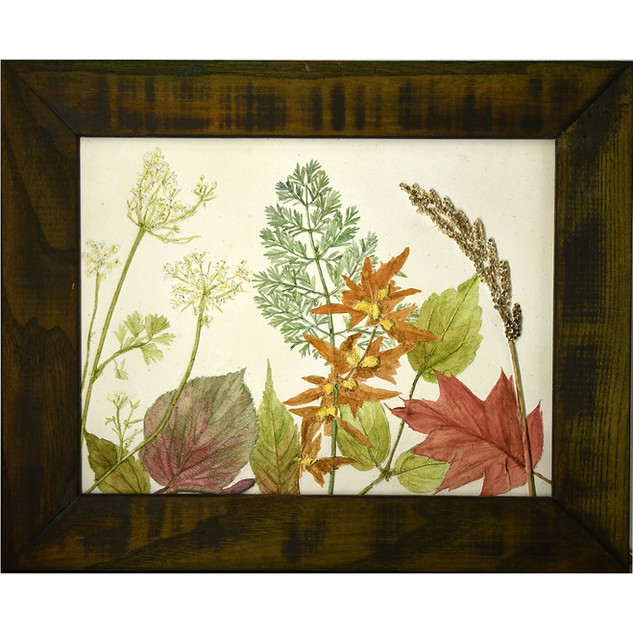 Oak, Raspberry Leaves and Queen Anne's Lace SOLD $115.00USD