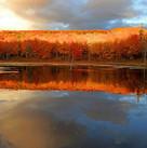 Autumn afire