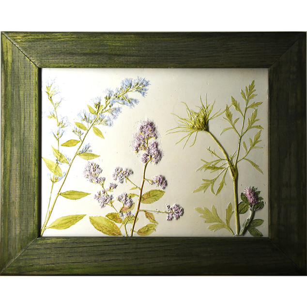 Queen Anne's Lace SOLD