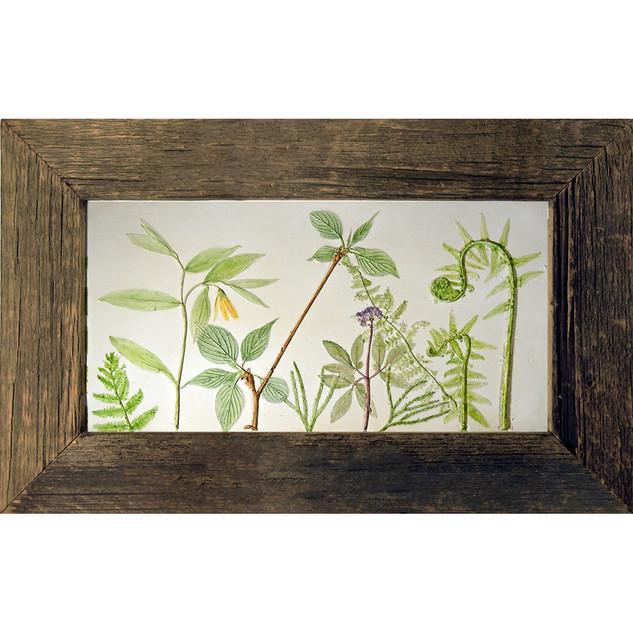 Hobblebush and Ferns $150USD