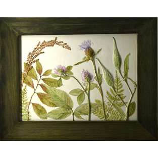 Clover, Thistle, Pods and Fern Spores  $115.00USD SOLD