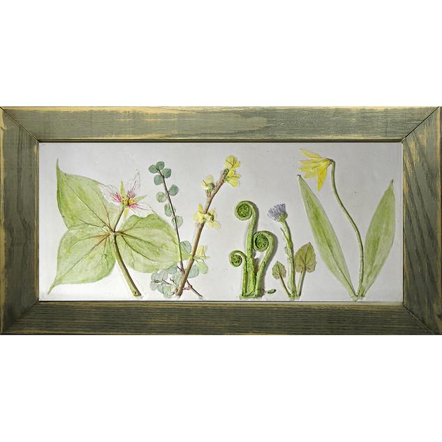 Trillium and Ferns $130USD