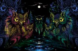 DREAMCATCHERS OWLS
