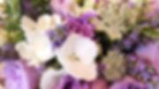 DSCF8895_edited.jpg