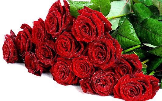 Passione Rosa