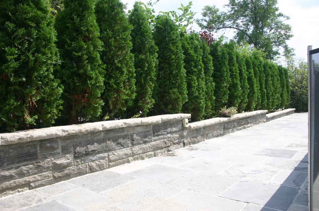 Walkway Border Retaining Wall