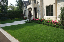 Front gardens and flagstone walkway