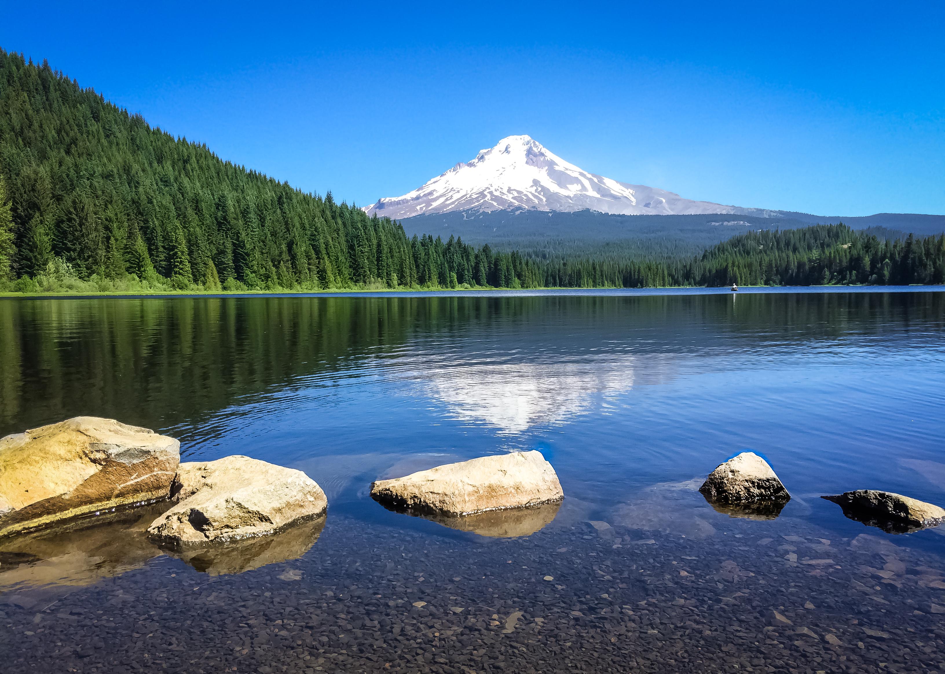 Oregon-5528