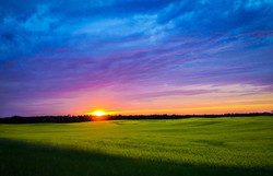 Dakota Sunset