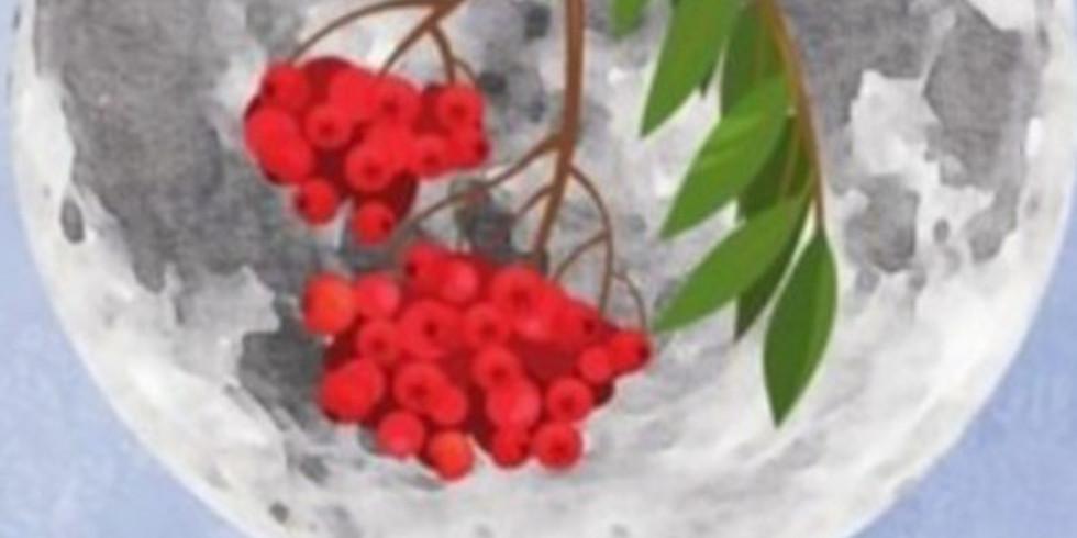 MEDITACIJA OB POLNI LUNI  - ICE MOON (LEDENA LUNA )