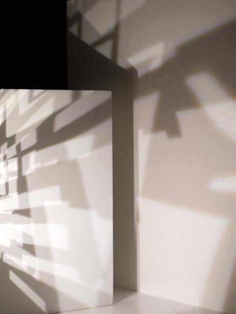 Shadow XVI