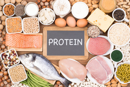 protein food for fit body