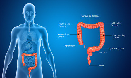 Trapped Intestinal Gas Natural Remedies
