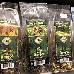champignons séchés amyco