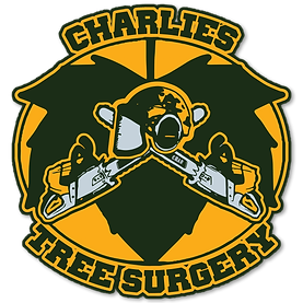 Charlie's tree surgery logo, crossed chansaws, chainsaw helmet, a bears face