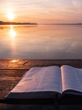 Buchempfehlungen für deinen Sommerurlaub