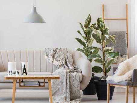 Home sweet home: 3 nachhaltige Alternativen für dein Zuhause