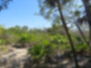 Lot 405 Eden Isle Caye Caulker Belize