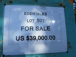 Land for sale - Lot 501 - Eden Isle on C