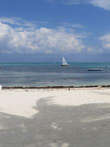Caye Caulker White Sand Island