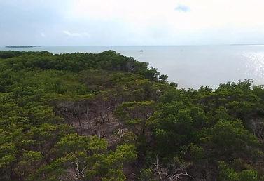Caye Caulker - Eden Isle - Lot 102