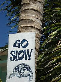Go Slow CC Belize.JPG