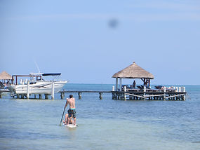 Stand up paddle around Caye Caulker, Bel