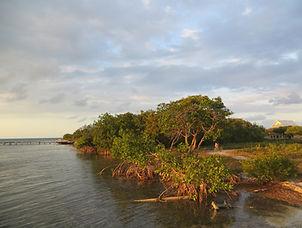 102 Caye Caulker Belize