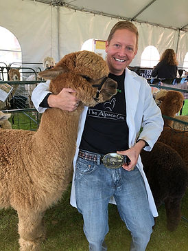 Judge Wade Gease is showing off his alpaca belt buckle that looks like the alpaca he is holding in one arm while attending an alpaca auction.