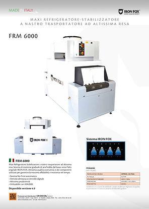 IRONFOX scheda FRM6000.jpg