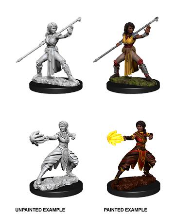 Dungeons & Dragons Nolzur's Marvelous Miniatures: Half-Elf Monk (Female)