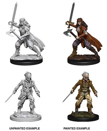 Dungeons & Dragons Nolzur's Marvelous Miniatures: Vampire Hunters