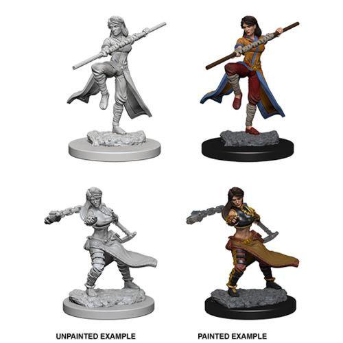 Dungeons & Dragons Nolzur's Marvelous Miniatures: Human Monk (Female)