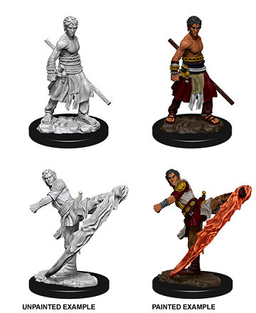 Dungeons & Dragons Nolzur's Marvelous Miniatures: Male Half-Elf Monk