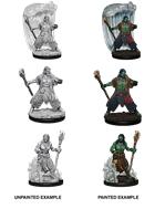 Dungeons & Dragons Nolzur's Marvelous Miniatures: Water Genasi Druid (Male)