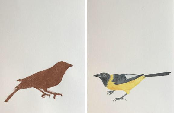 Pássaros_Diptico