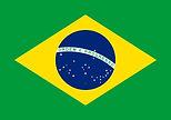 brazilian 1-flag-large.jpg