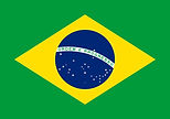 brazilian 1-flag-large.jpg