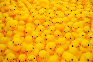 1/13 - National Rubber Duck Day